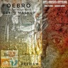 """Foebro"" Instrumental Teaser - Folk and Heavy Rock Mashup"