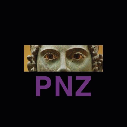 POTTER NATALIZIA ZEN - CHAOSMOSIS [ELP034]