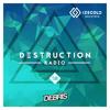 Debris & IZECOLD - Destruction Radio 058 2018-02-19 Artwork