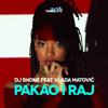 DJ Shone feat. Vlada Matovic - Pakao I Raj
