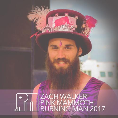 Zach Walker - Pink Mammoth - Burning Man 2017