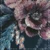 All The Time Feat. Jordan Solomon Prod. (Phantum x Labcook) Portada del disco