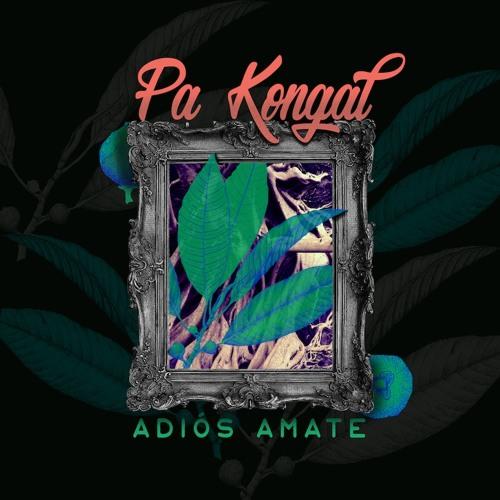 Pa Kongal - Adiós Amate EP