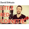 Little Red Corvette - Prince (Acoustic Ukulele Version)