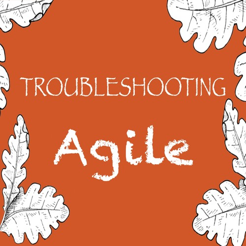 Motivating Individuals and Trusting Your Agile Team