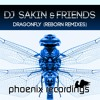 DJ Sakin & Friends - Dragonfly (Sakin Bozkurt Remix)