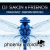 DJ Sakin & Friends - Dragonfly (DJ Sakin & DJ Bjoern X Mix)