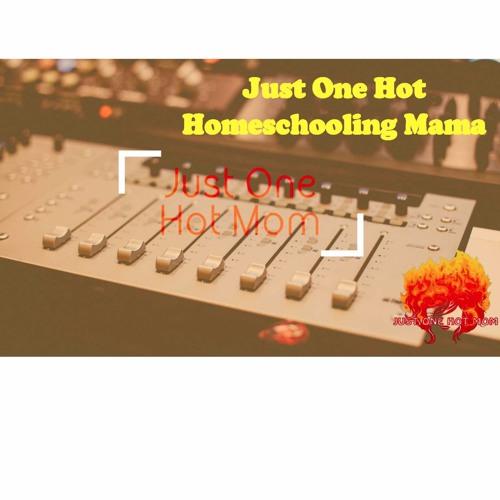 Just One Hot Homeschooling Mama