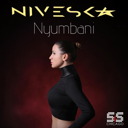 NivesKa - Nyumbani (Original Mix) Preview S&S Records Chicago