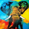 "Elephant (""Rumble in the Jungle"" psy-trance remix)"