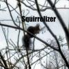 Squirrelizer.wav