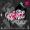 Wolf Player, Luca Buzanelli - Can't Stop Me Now (Original Mix)