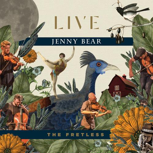 The Fretless - Jenny Bear (Live)