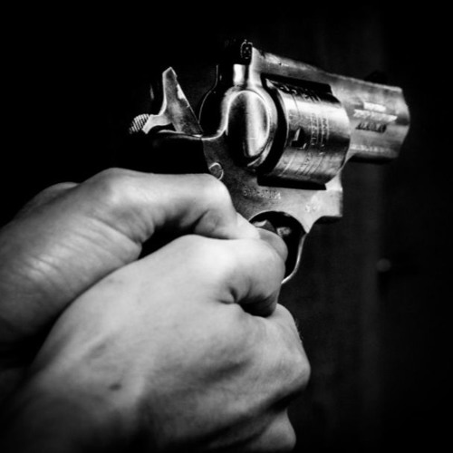 Gun violence: myths, remedies, and the only solution