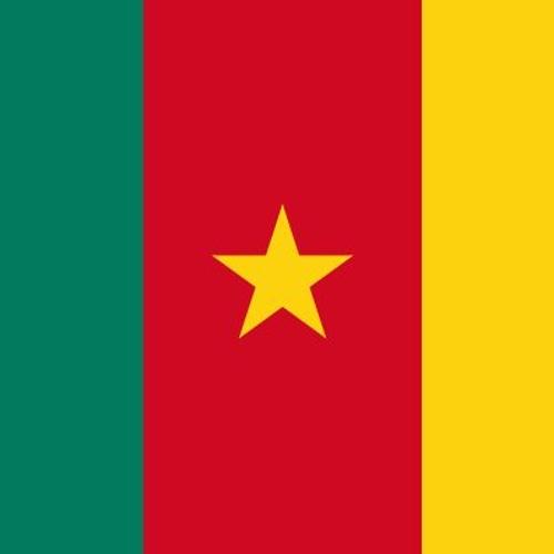 Le café des francophones - Le Cameroun en perspective