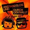 DJ RS - Anstandslos Und Durchgeknallt (DJ RS AuD Album Mix)