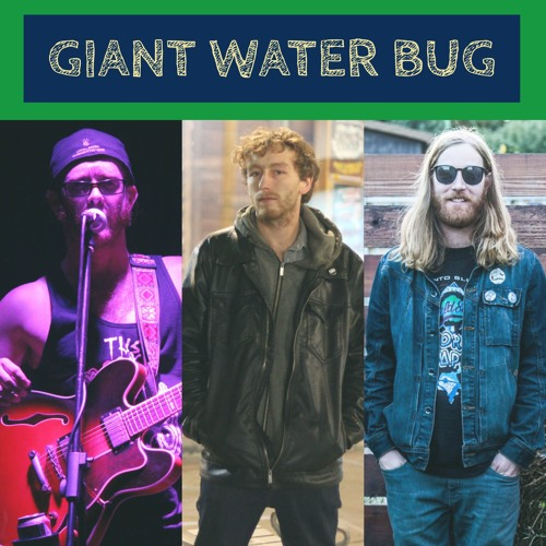 Giant Water Bug - Space Sandwich