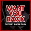 5 Seconds of Summer - Want You Back (Acoustic Cover) by Shayne Orok