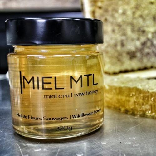 MM11 - Nicholas Melka : Beekeeper & Honey Connoisseur at MIEL MTL