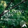 Earth Grounding Rain Meditation 432hz