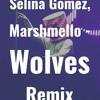 Selena Gomez and Marshmello - Wolves Remix