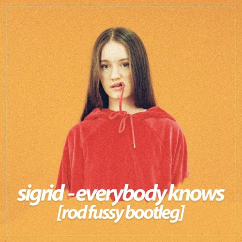 everybody knows sigrid mp3 free download