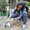 Fundación Ecológica de Pinamar cumplió 27 años - Aparición de Pinguinos - Jennifer Pezzo