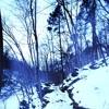 Frozen Bones (Prod. suni vega)MUSIC VIDEO IN DESCRIPTION