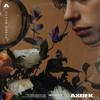 ASDEK - Black Roses