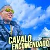 MC Magal - Cavalo Encomendado (DJ Russo e DJ CK)