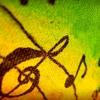 DANCEHALL SOUND MIX VOL. 11