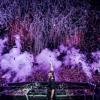 David Guetta Martin Garrix Brooks Vs. Chris Brown - Like I Do Vs. 17 Vs. 3x Yeah (WeDamnz Mashup)