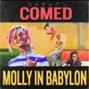 Skrillex, Lil Pump & Migos - MOLLY IN BABYLON (COMED Bootleg)