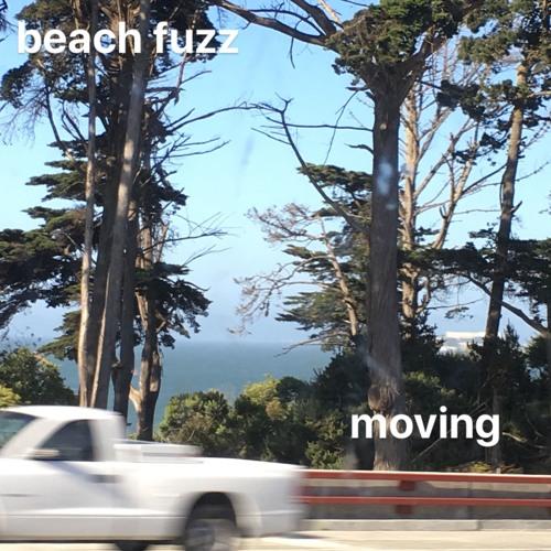 Beach Fuzz - Moving