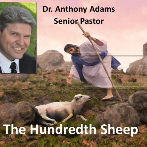 The Hundredth Sheep