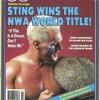 Pro Wrestling Illustrated - November 1990