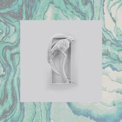 Elevation (Instrumental)