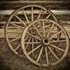 Darius Rucker - Wagon Wheel (Cover)