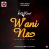 Wani Nso (Prod By Willisbeatz)