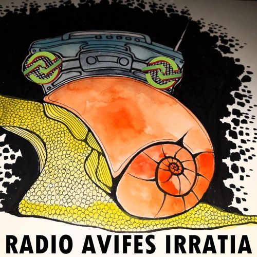Programa #2 Radio AVIFES Irratia
