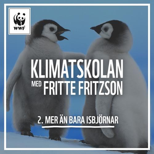 Klimatskolan, avsnitt 2: Mer än bara isbjörnar!