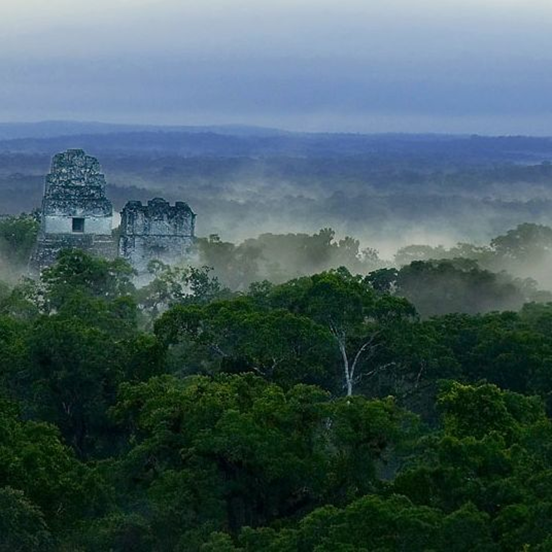 4 Ways the New Maya Discoveries May...