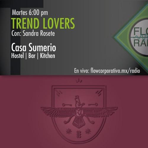 Trend Lovers 115 - Casa Sumerio, hostel - bar - kitchen