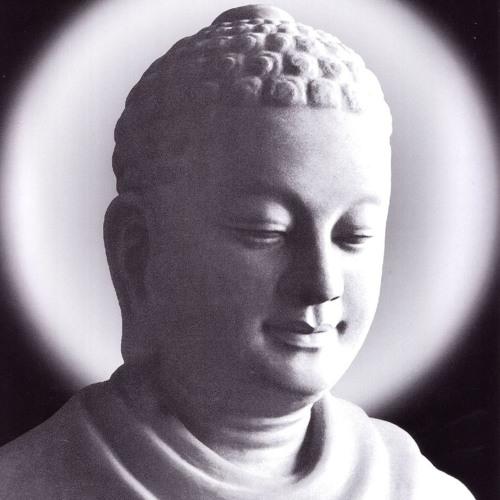 Kinh Đại Bát Niết Bàn 07 - Sư Toại Khanh