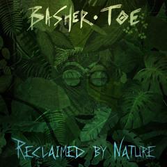 Basher Toe - Spireality Pt.1 (feat. Mama Loopa)