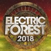 Electric Forest 2018 Weekend One Hype Mix