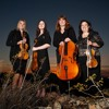 After All by Peter Cetera & Cher- String Quartet