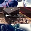 AuroraSample IR: Ampeg_SVT-3_Classic_RE20