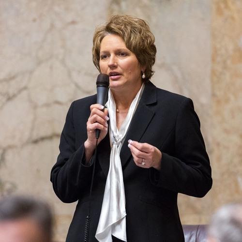 02-27-18 - FLOOR SPEECH: Rep. Liz Pike speaks against payment for surrogate pregnancy