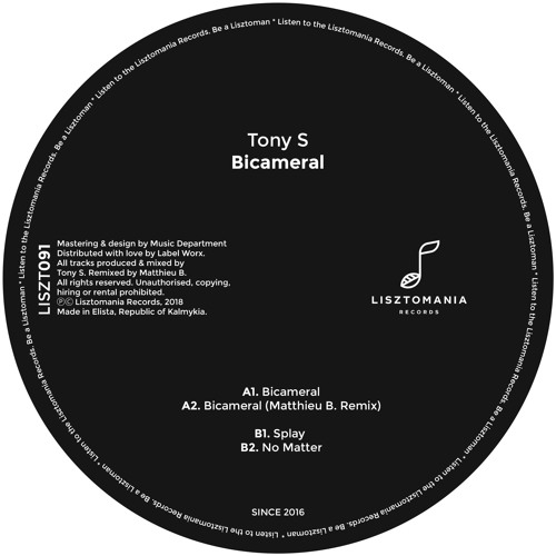 Tony S - 'Bicameral' (Matthieu B Remix) (SC Clip) [Lizstomania Records]